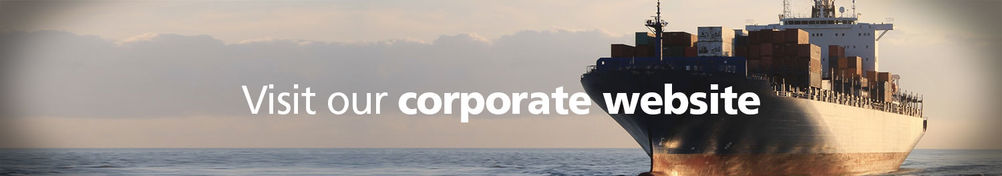 VIKING corporate website