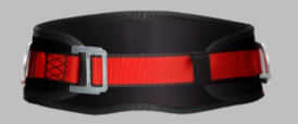 Safety belt with 2 D rings.